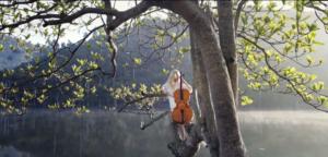 clean-bandit-extraordinary-in-tree